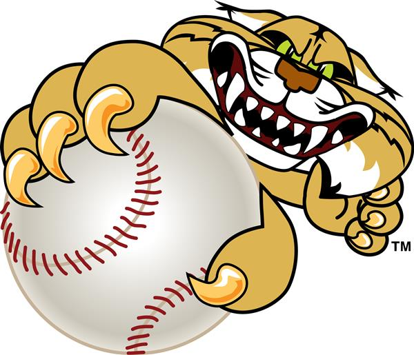 wildcat with baseball
