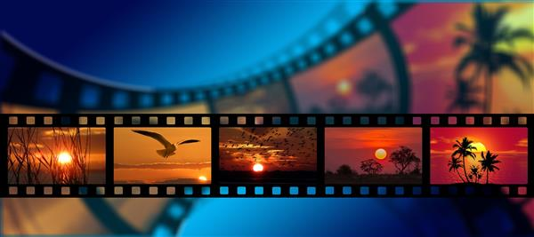 film strip with nature images