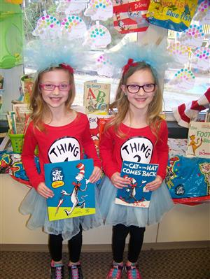 thing1thing2brown